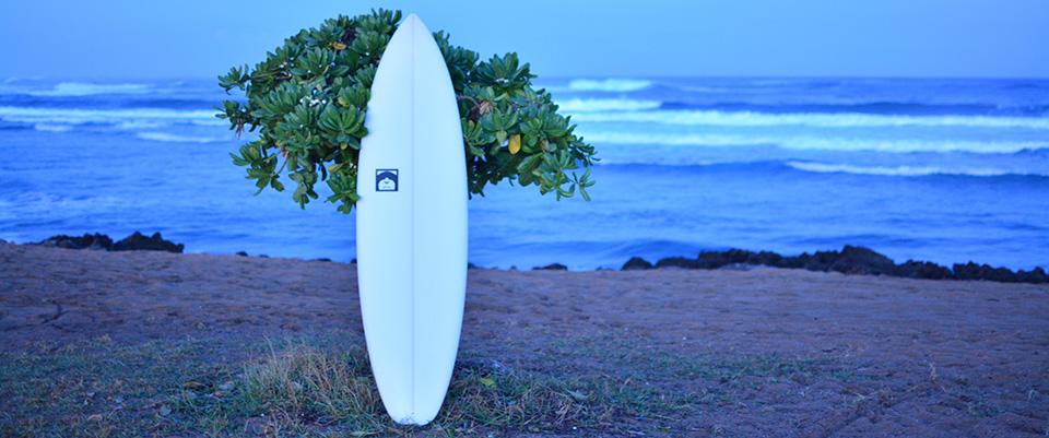fat elvis tore surfboard